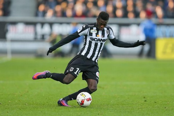 angers sco foot dalle angevine